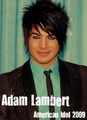 Adam Lambert - american-idol fan art