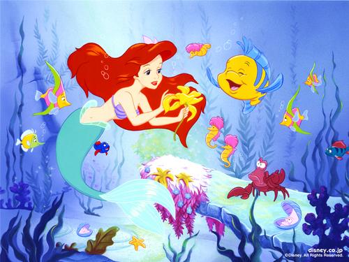 Ariel wolpeyper
