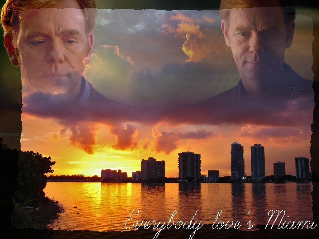 David Caruso - Wallpaper Actress