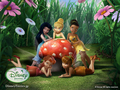 Disney Fairies Wallpaper - disney-fairies wallpaper