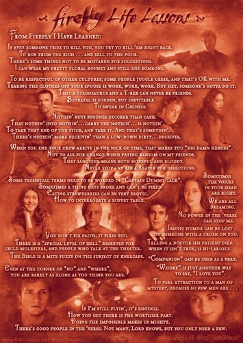 Firefly wallpaper called Firefly life lessons