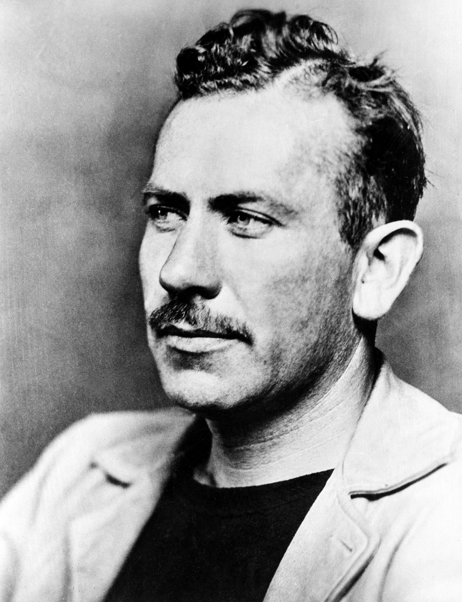 institutional memory licensed for non commercial use only john john steinbeck