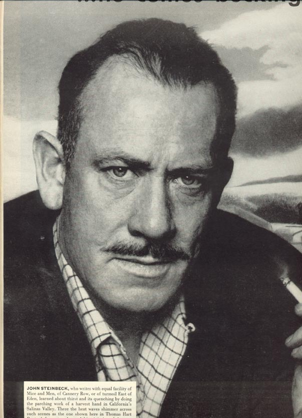 the turtle in grapes of wrath by john steinbeck In his fascinating portrayal of the 1930s »dust bowl« john steinbeck  john steinbecks the grapes of wrath english literature essay  the grapes of wrath.