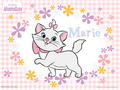 Marie Wallpaper - marie-aristocats-disney wallpaper