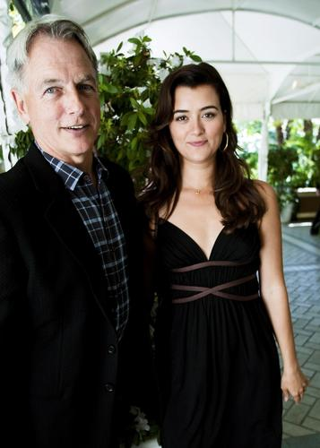Mark and Cote NCIS Press Conference