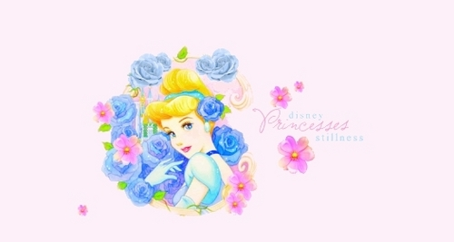 Princess Золушка