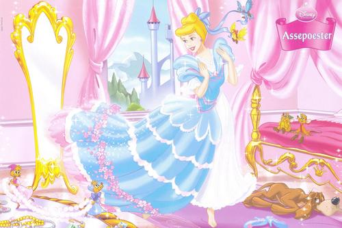 Princess cinderela
