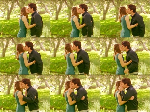 Rory and Jess fondo de pantalla possibly containing a alheña, privet hedge and a hedge called First kiss