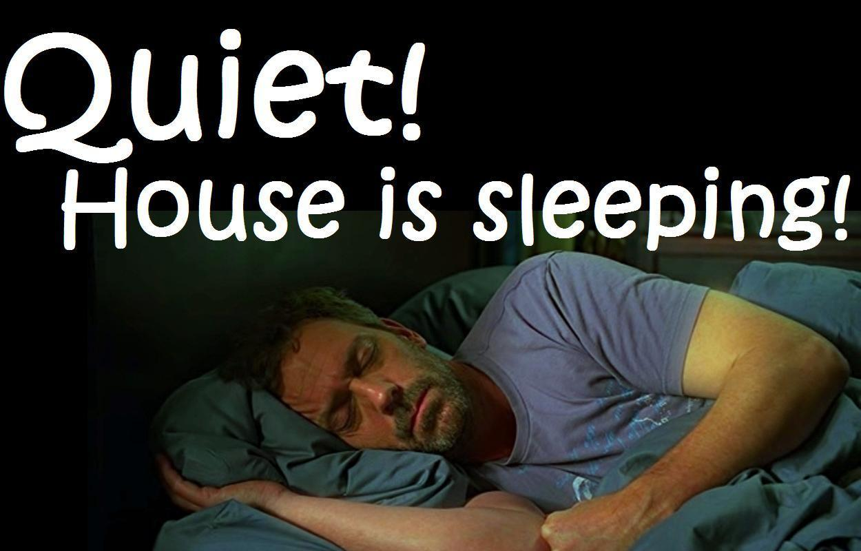 Sleeping House (for lovehugh)