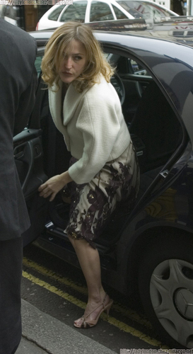 Gillian Anderson achtergrond containing a business suit titled gillian