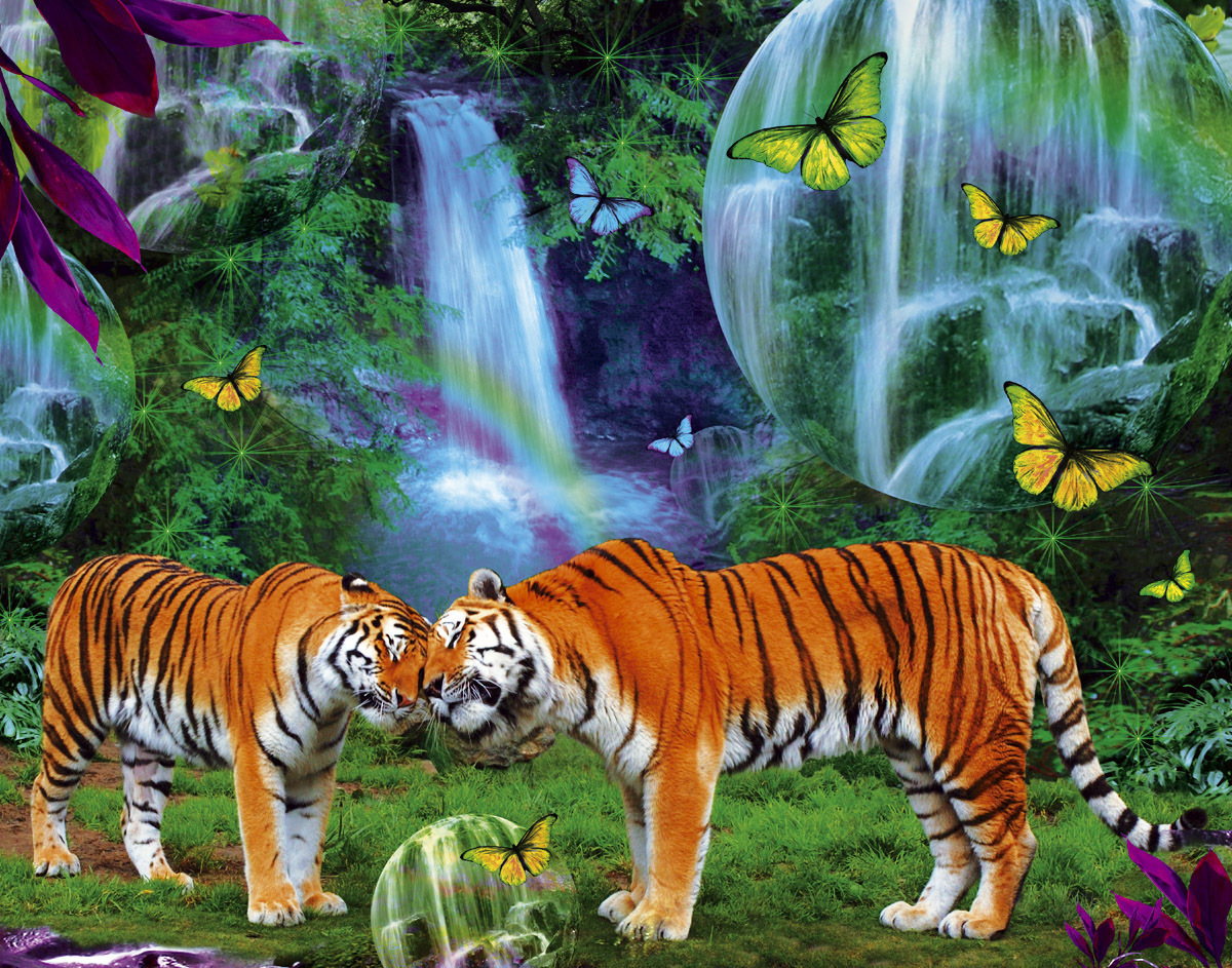 Big Cats Images Pretty Tigers Hd Wallpaper And Background Photos