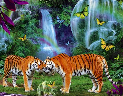 pretty 虎