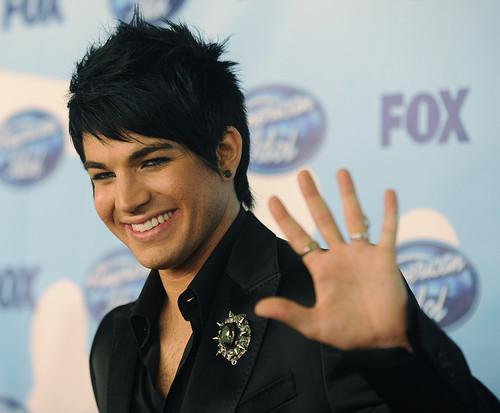 American Idol wallpaper with a bearskin called Adam Lambert