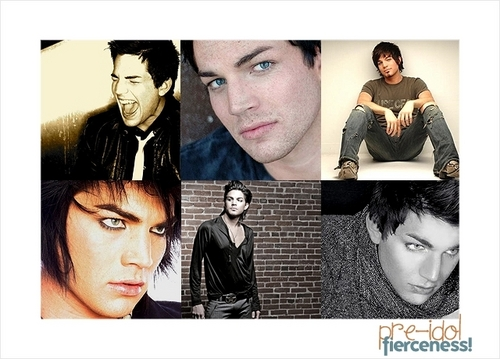 American Idol wallpaper probably with a newspaper, a portrait, and anime titled Adam Lambert