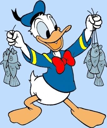 Donald con vịt, vịt