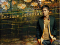 ENRIQUE - enrique-iglesias wallpaper