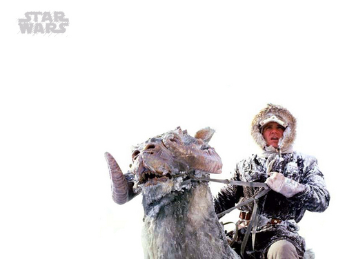 Han Solo fond d'écran