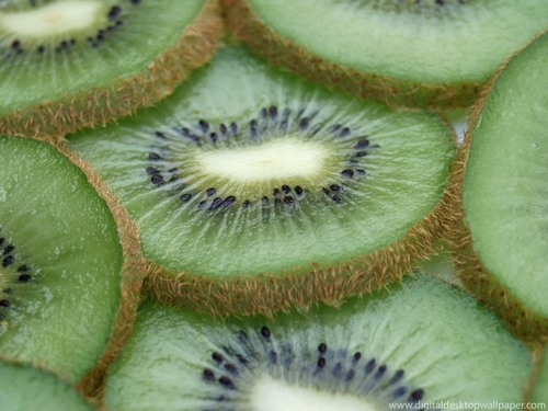 Kiwi Wallpaper - fruit Wallpaper