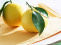 fruit - Lemon Wallpaper wallpaper
