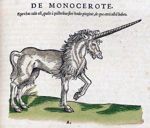 Monocerote