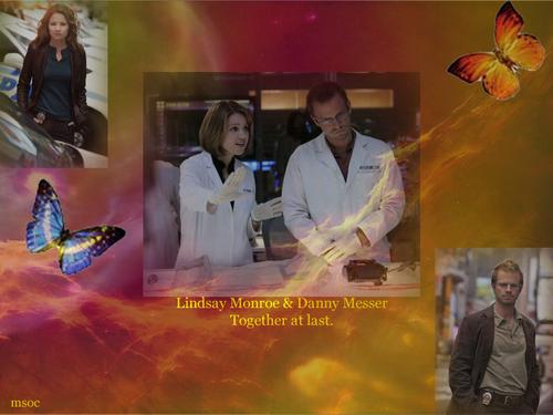 CSI:NY پیپر وال containing a کنسرٹ titled NY