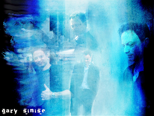CSI:NY wallpaper entitled NY