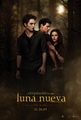 New Moon Poster in Spanish - twilight-series photo