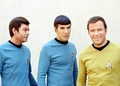 Our favorite actors - Shatner,Nimoy and Kelley - leonard-bones-mccoy photo