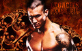 Randy Orton - randy-orton fan art
