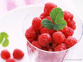 fruit - Raspberry Wallpaper wallpaper