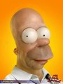 Real Homer - the-simpsons photo
