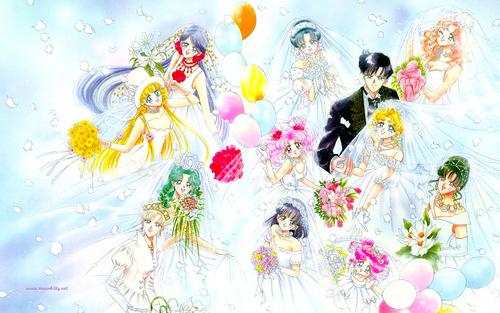 Sailor Wedding (Widescreen)