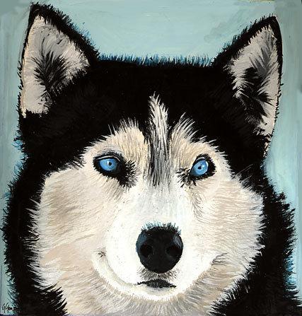Aso wolpeyper entitled Siberian Husky