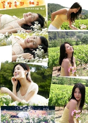 韓国ドラマ 壁紙 containing a portrait called Song Hye-Kyo