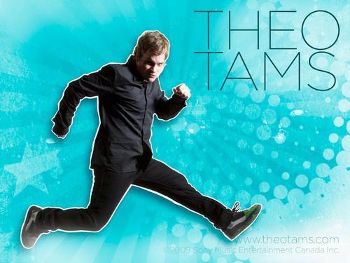 Theo Tams