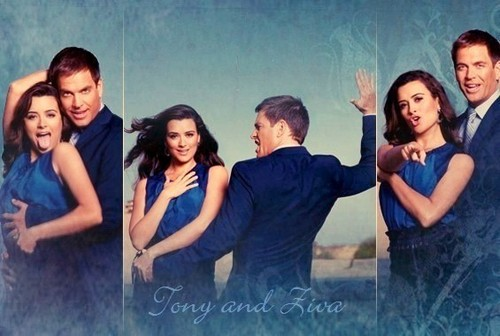 NCIS wallpaper containing a portrait entitled Tony and Ziva
