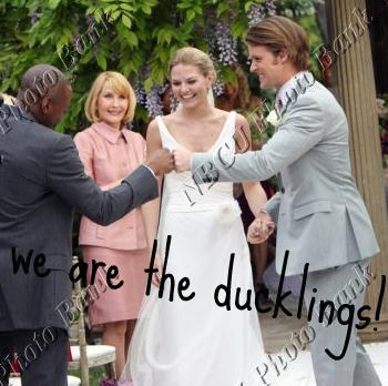 ducklings - wedding day!