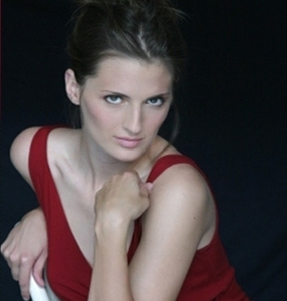 Stana Katic achtergrond with skin called stana katic