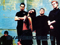 -Evanescence♥ - evanescence wallpaper