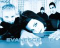 evanescence - -Evanescence♥ wallpaper