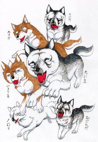 Anime Wölfe
