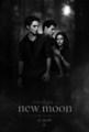 Black and White poster - twilight-series photo