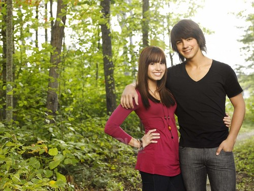 Jemi achtergrond with a mahogany, a sitka spruce, and a beech titled Camp Rock foto's (Newly Released)