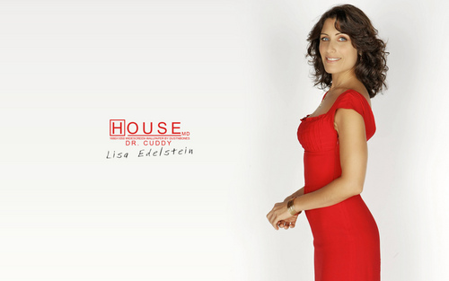 House M.D. wallpaper with a cocktail dress entitled Cuddy Wallpaper