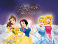 Disney Princess Wallpaper - disney-princess wallpaper