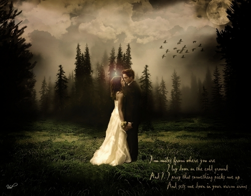 Breaking Dawn wallpaper with a bridesmaid titled Edward & Bella