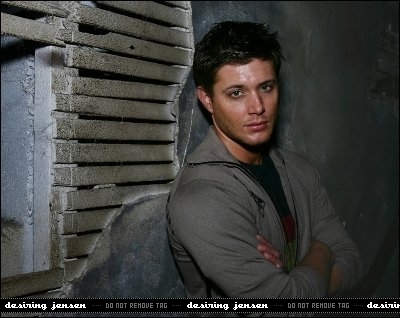 Jensen Ackles Hintergrund probably containing a sign called Jensen photoshoot