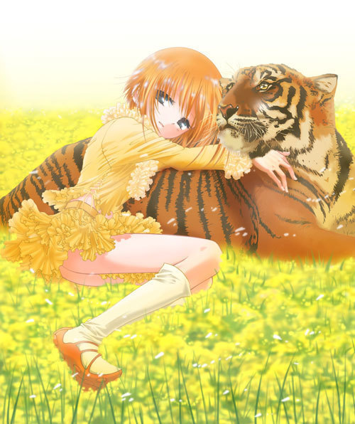 Kiari and tiger kuroken