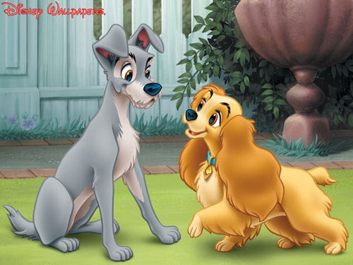 Classic Disney kertas dinding possibly with a lippizan titled Lady And The Tramp