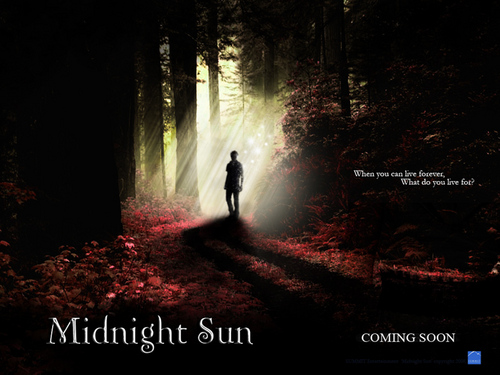 Midnight Sun Poster (fanmade)